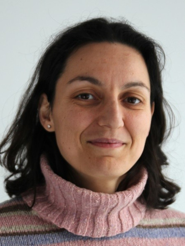 JP Dr. Maria Fyta <br /> Group Leader at the Institute for Computational Physics, University of Stuttgart <br /> <br /> Complex Materials und Nanoscience